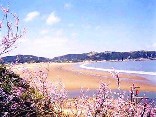 需自理)塔湾金沙景区位于浙江省舟山市普陀区的桃花岛东南部,介于馒头
