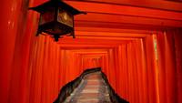 京都大阪+奈良+天桥+名古屋+富士山+东京5晚日本美食图片