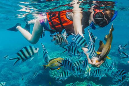 <马来西亚仙本那机票+当地5晚6日游>自由定制,可升级BC套餐,网红马布岛/卡帕莱,可升级度假村水屋/海钓/红树林/深潜,含浮潜/旅行宝