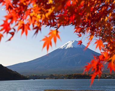 日本紅葉6日游
