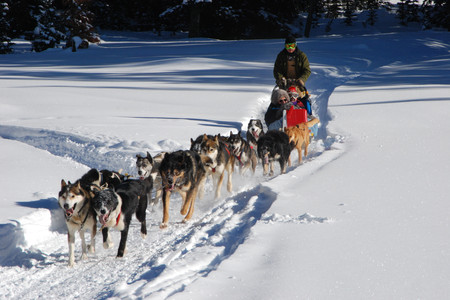 <芬兰追寻北极光之旅6晚7日游>赫尔辛基集散/圣诞老人村/哈士奇拉雪橇/极地雪鞋/平坡滑雪/驯鹿农场/极地摩托/北冰洋一日游(当地参)