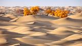 新疆塔克拉玛干沙漠里的胡杨林