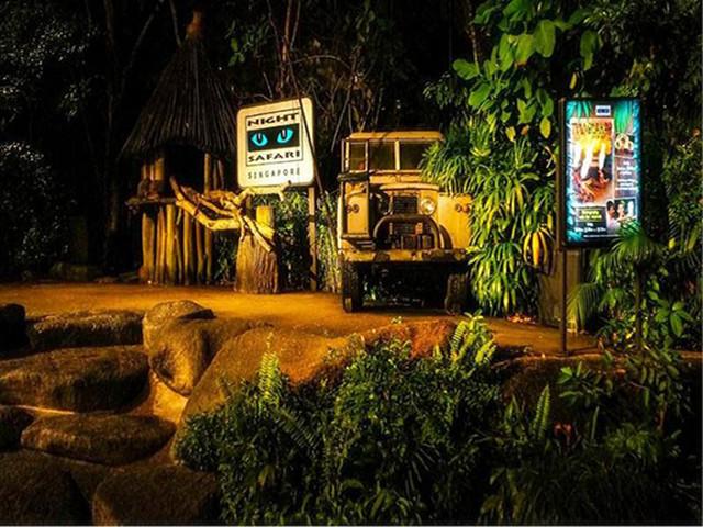 <新加坡夜间野生动物园门票>(可选中文小火车+可订当天)