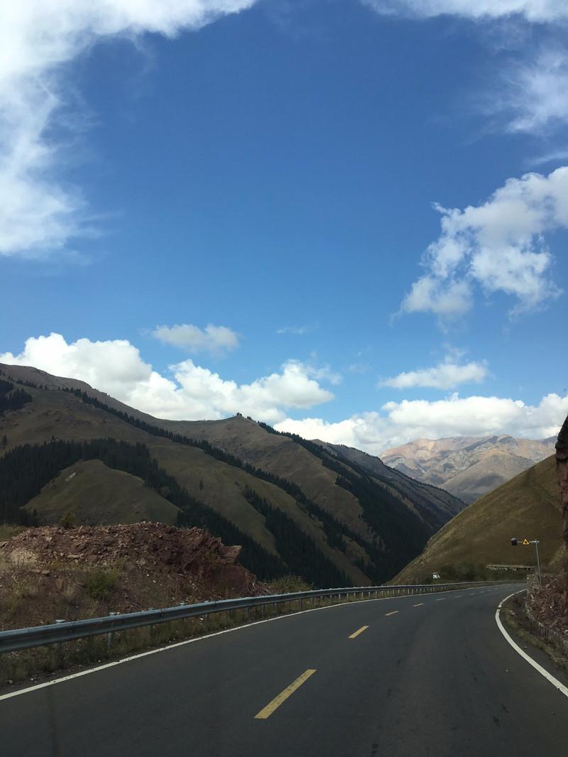 在这样的风景里无论是驾驶还是坐车都不知