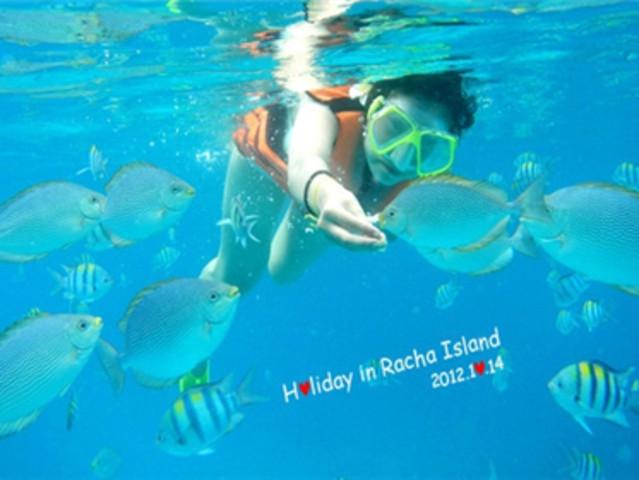 壁纸 海底 海底世界 海洋馆 水族馆 桌面 639_480