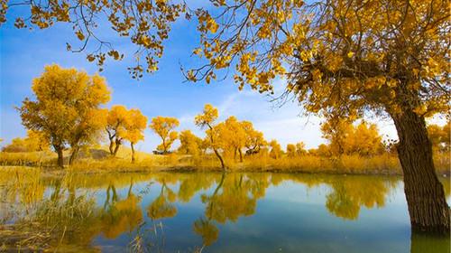 新疆游览库尔勒罗布人村寨+博斯腾湖2日