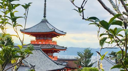 日本大阪-京都-奈良机票