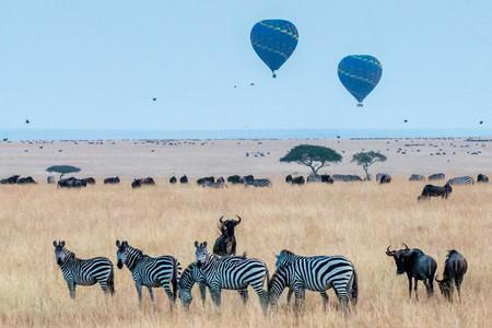 <肯尼亚内罗毕+马赛马拉+阿伯德尔+奈瓦沙机票+当地10日游>4人起发,五星酒店,越野开顶游猎车,中文向导,追踪动物迁徙,甜水公园
