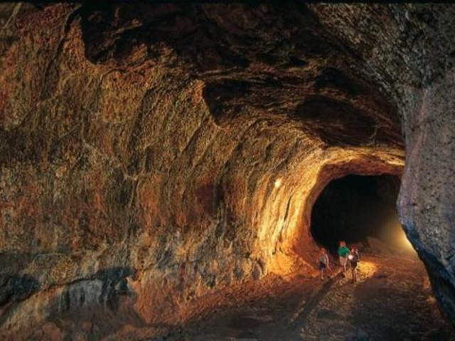 <凯恩斯奇拉哥洞穴探索一日游>