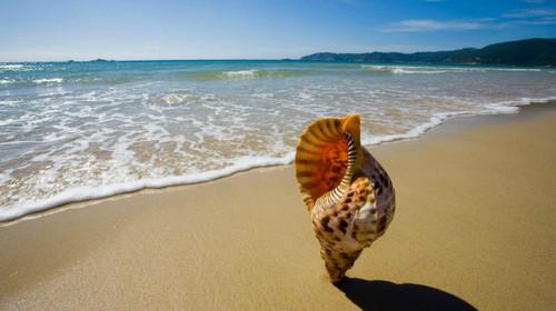 南宁-北海银滩-涠洲岛-北海老街-金海湾红树林双飞5日游>北海旅游