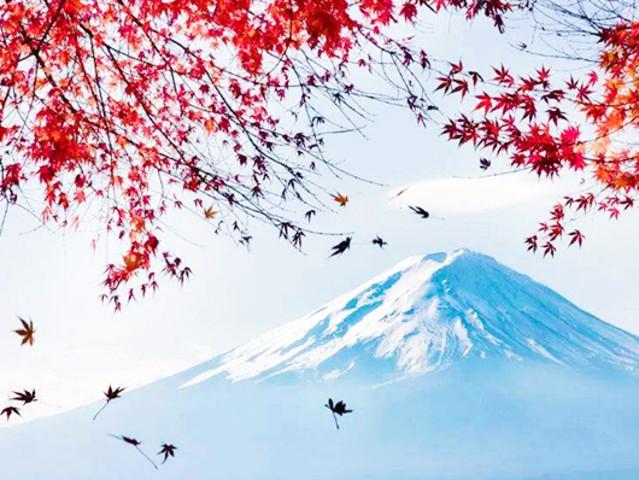 -惠那峡-富士山-东京观漫天美食婆娑飞舞增游城市中国排行榜红叶十大图片