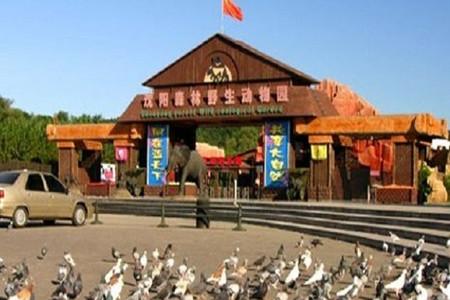 <沈阳棋盘山森林动物园1日游>沈阳往返、含熊猫馆