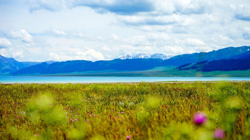 新疆伊犁赛里木湖1日游