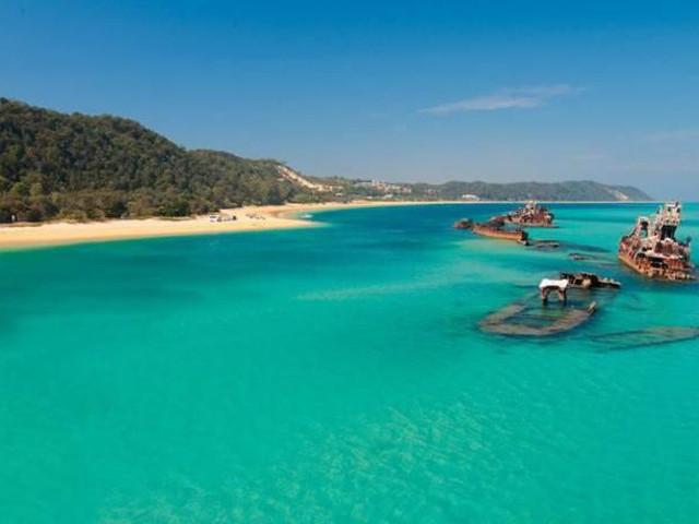 <布里斯班/黃金海岸 摩頓海豚島生態一日游(浮潛+滑沙+透明底劃艇)>(當地參團)