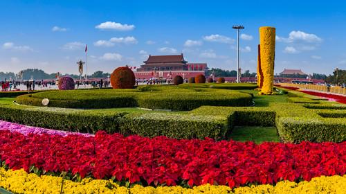 北京市天安门广场花坛植物景观
