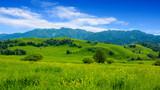 China Xinjiang Nalati Valley Grassland