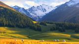 Xinjiang Nalati Aerial Grassland