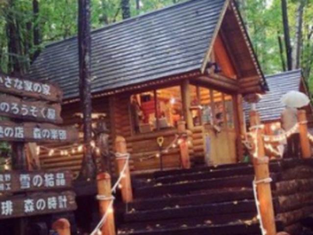 <相约北海道 冬季旭川小团 巴士一日游>(旭川动物园+青池+富田农场+精灵木屋)