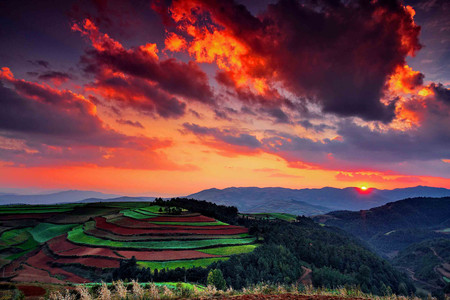 滇中第一山轿子雪山,红土地景观,千年古龙树,景区内酒店,云