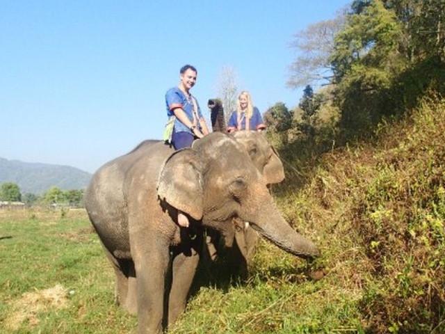 <象岛一日游【与大象亲密接触之旅】>