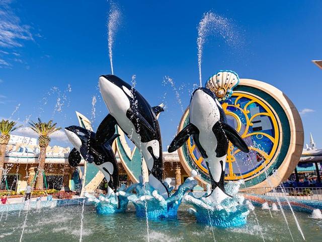 <上海海昌海洋公园一日游【虎鲸科普秀,席卷你的想象】>