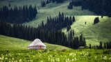 新疆那拉提草原美景