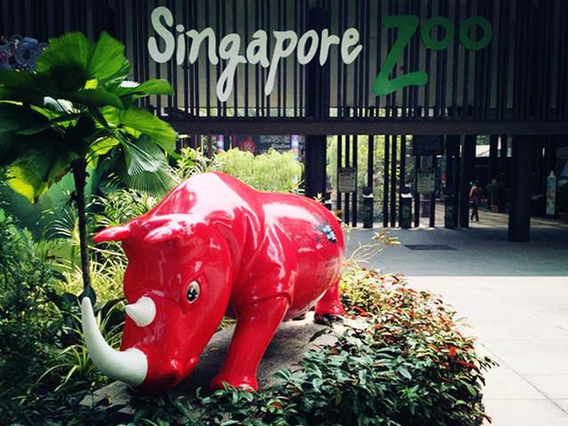 新加坡经典一日游 日间动物园 河川生态园