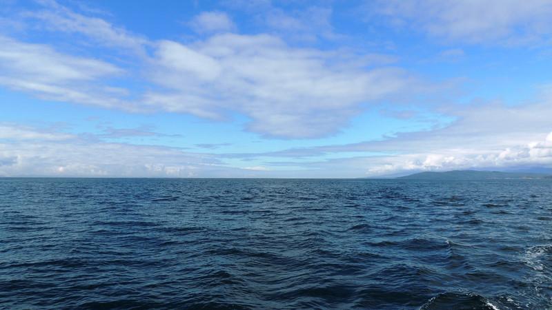 莫道昆明池水浅,观鱼胜过富春江--温哥华岛印象