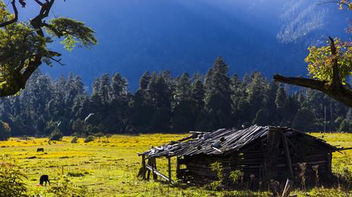 西藏南伊沟