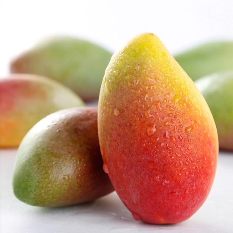 海南精选热带水果 可直送机场 酒店图片