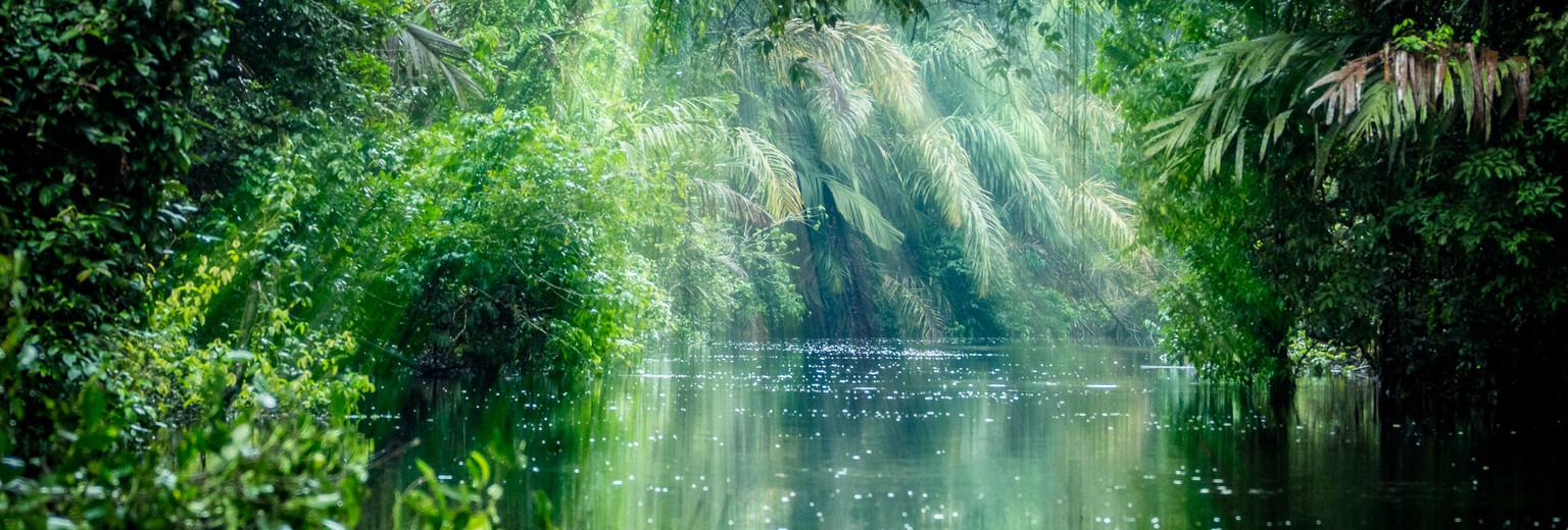 呀诺达雨林6