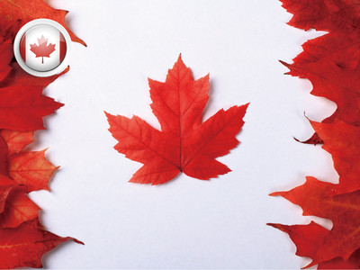 加拿大探亲签证