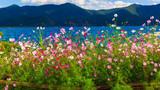 Lige Peninsula, on Lugu Lake, Yunnan, China