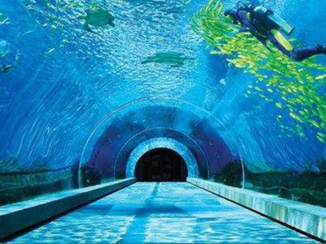 <【双11立减36元】三亚美食/天房洲际海底餐厅/自助餐>美到窒息,一生总要去一次的海底餐厅,浪漫优雅的海底餐厅,180度全景隧道