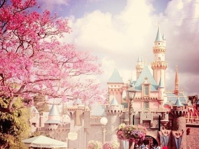 <日本东京迪士尼乐园+迪士尼海洋一日游【新宿出发门票+巴士或专车接送】>