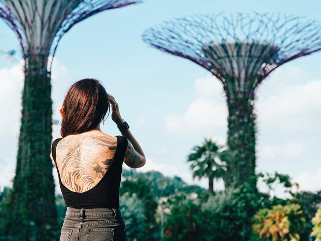 <新加坡滨海湾花园 花穹+云雾林双馆 可选空中走廊>(电子票扫码入园无需取票,实体票需要到金沙酒店取票)