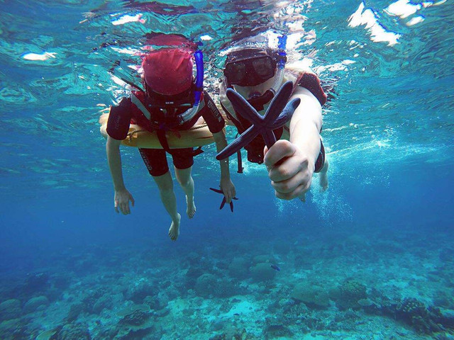 <仙本那-马达京+汀巴汀巴+邦邦岛一日游>免费接送,全程中文导游服务,潜水的魅力,可选浮潜:3次浮潜;体验潜水:2次潜水+1次浮潜