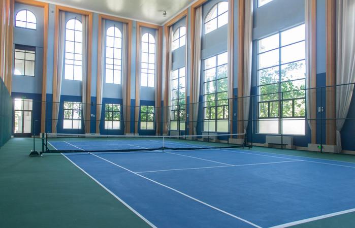 分三层,第一层是标准室内篮球场,标准游泳池和室内网球场,第二层是以
