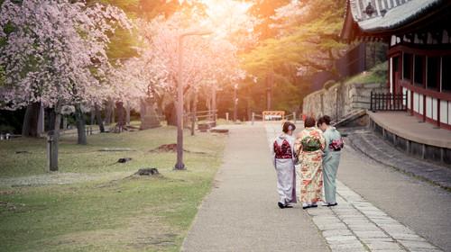 Three japanese girls wearing kimono walking in sakura garden with morning lights, taken in Nara, Japan