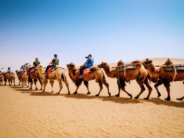 <银川-沙坡头-腾格里沙漠1日游>宁夏必游线路,体验大漠风情,畅游中国四大沙漠之一