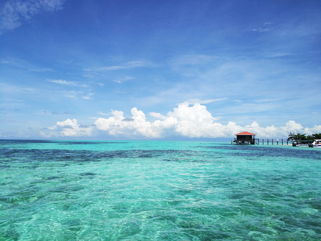 <潜堂 沙巴仙本那敦沙卡兰海洋公园一日游 浮潜 体验深潜 持证深潜 四岛 中式服务