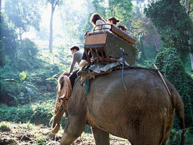 <巴厘岛旅游 大象公园骑大象亲子一日游>酒店接送+火山温泉+BAT漂流+激情ATV