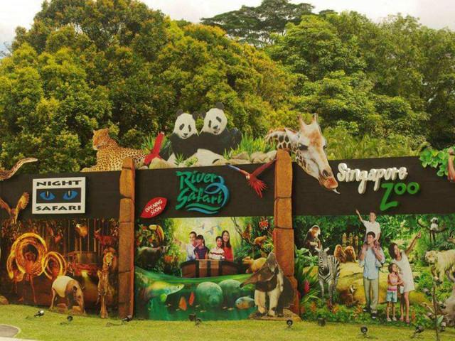 <新加坡三大动物园1日游>与动物亲密接触  日间动物园 河川生态园园 夜间野生动物园 中文小火车(当地参团)
