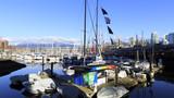 加拿大广场温哥华格兰维尔岛码头停靠船只