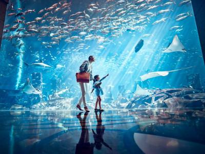 三亚 亚特兰蒂斯失落的空间水族馆旅游攻略