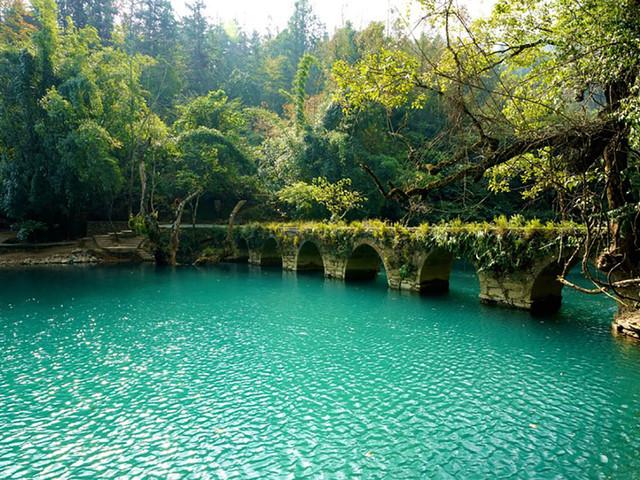 小七孔水上森林 我们将走上奇特的【水上森林】这种水,石图片