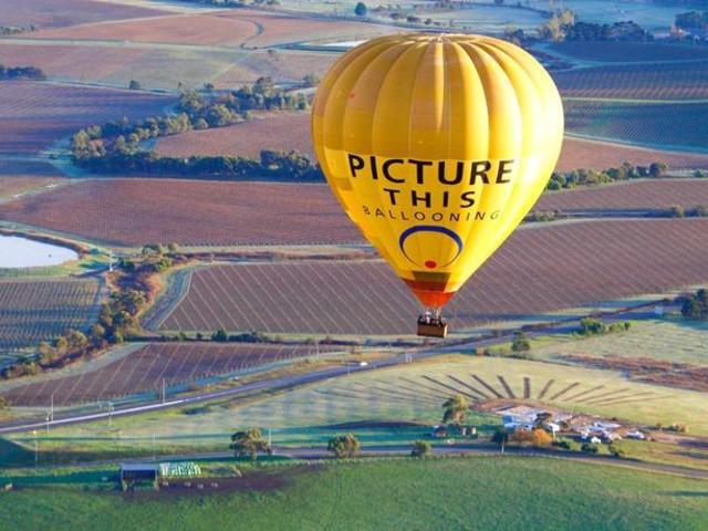 <墨尔本亚拉河谷1小时热气球观光飞行>