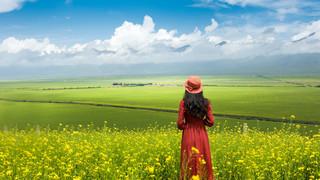 阿勒泰8日游_到新疆旅游網_新疆短期旅游_新疆旅游行程安排