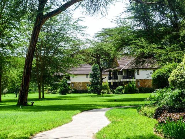 肯尼亚10日游>五大园区,动物大迁徙,火烈鸟,动物孤儿