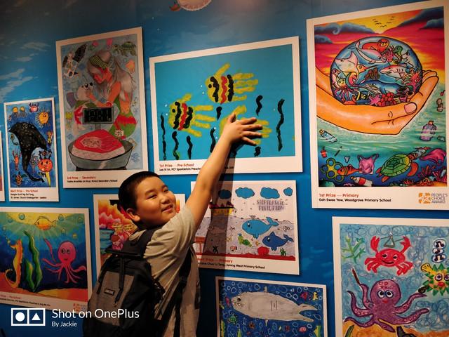 新加坡的小朋友创作的儿童画,这个用手掌拓印的画很有创意.